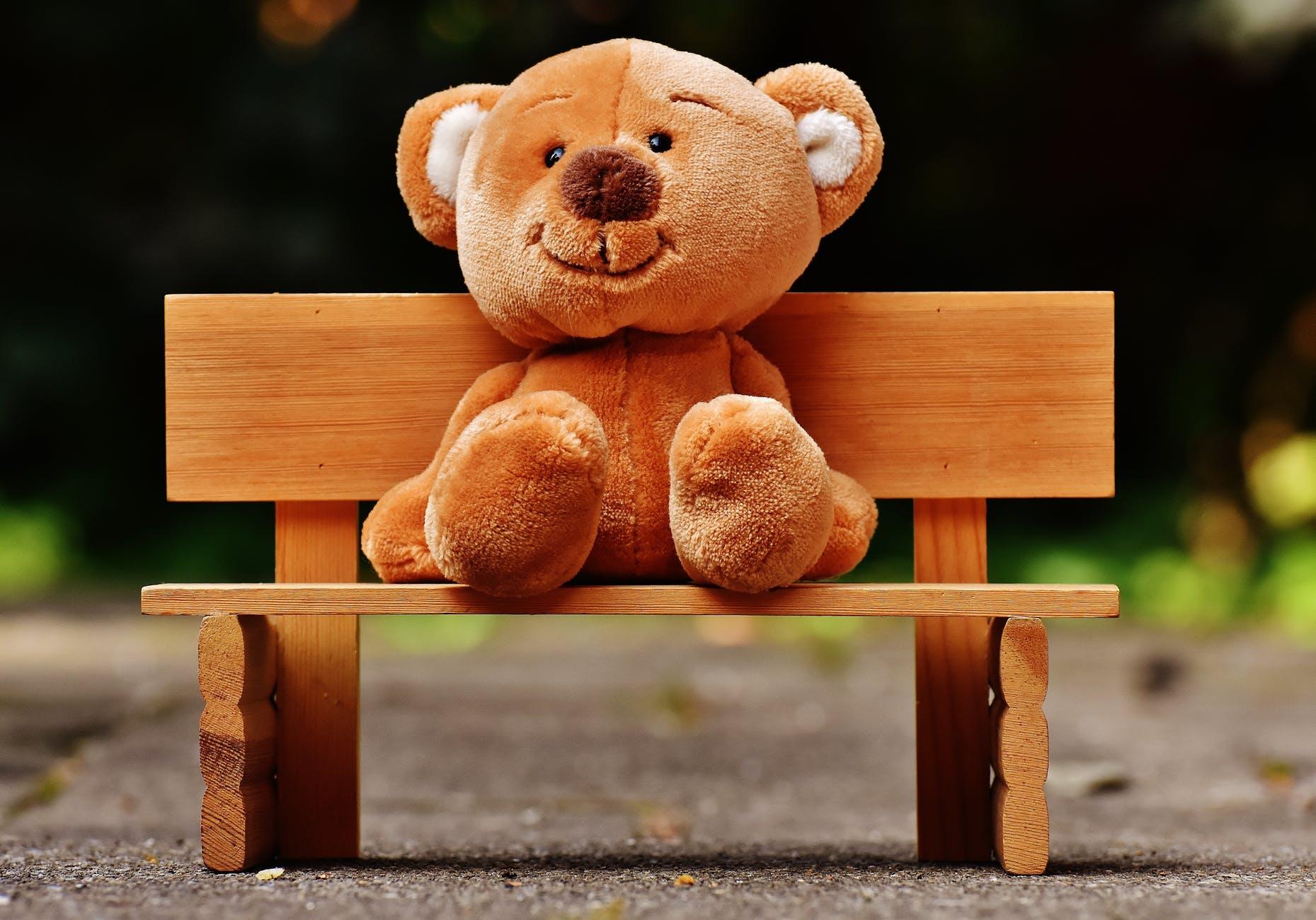 bear bench blur board